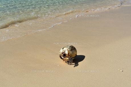 宮古島/冬のビーチの波打ち際の写真素材 [FYI01232976]
