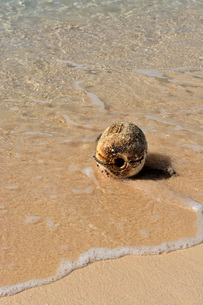 宮古島/冬のビーチの波打ち際の写真素材 [FYI01232982]