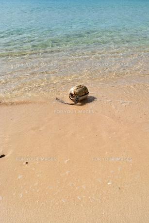 宮古島/冬のビーチの波打ち際の写真素材 [FYI01232989]