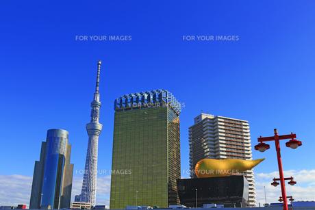 隅田川の浅草側から見た東京スカイツリーとアサヒビールのタワーとホールの写真素材 [FYI01233032]