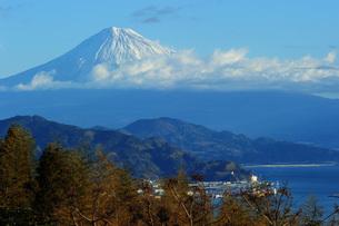 富士山 晴天の写真素材 [FYI01233067]