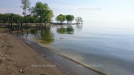 琵琶湖の写真素材 [FYI01233094]
