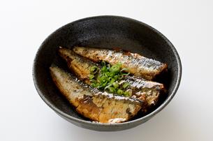 イワシの生姜煮の写真素材 [FYI01233377]