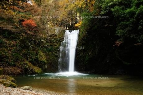 横谷峡四つの滝の白滝の写真素材 [FYI01233547]