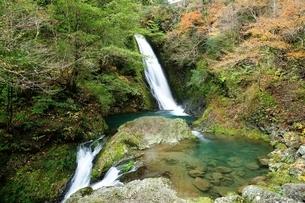 横谷峡四つの滝の鶏鳴滝の写真素材 [FYI01233550]