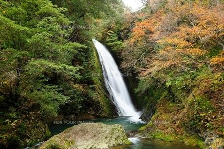 横谷峡四つの滝の鶏鳴滝の写真素材 [FYI01233552]
