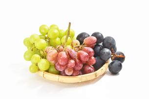 白背景の葡萄の写真素材 [FYI01233564]