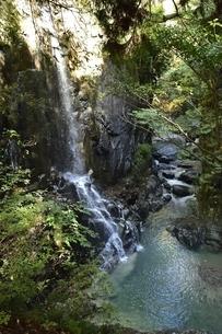 付知峡の不動滝の写真素材 [FYI01233686]