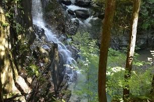 付知峡の不動滝の写真素材 [FYI01233690]