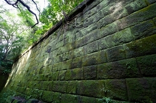 猿島の苔むした石壁の写真素材 [FYI01233932]