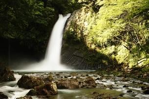 天城山 浄蓮の滝の写真素材 [FYI01234007]