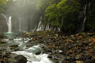 静岡県富士宮市 白糸の滝の写真素材 [FYI01234011]