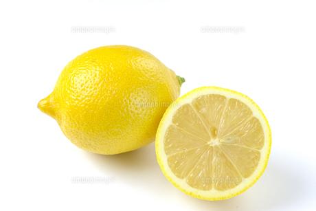レモンの写真素材 [FYI01234088]