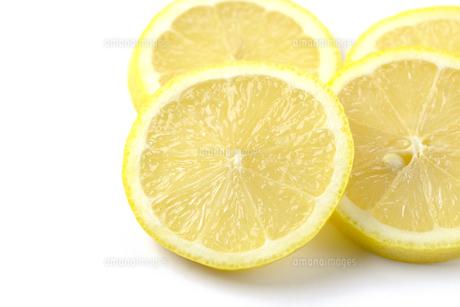 レモンの写真素材 [FYI01234095]