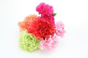 カーネーションの花束の写真素材 [FYI01234267]