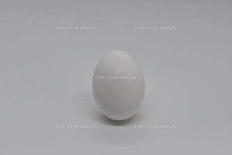 白卵の写真素材 [FYI01234287]