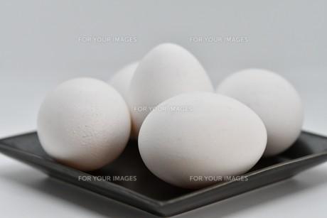 白卵5個の写真素材 [FYI01234288]