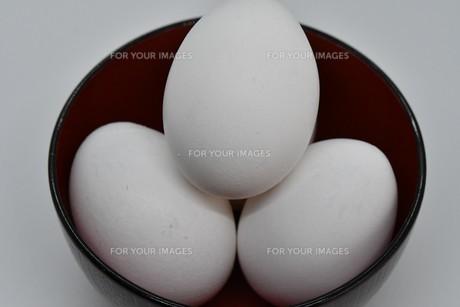 白卵の写真素材 [FYI01234289]