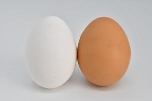 紅白卵2個の写真素材 [FYI01234290]