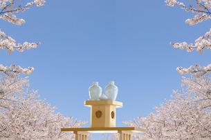 桜の花とお神酒の写真素材 [FYI01234330]