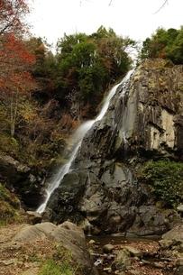 飛騨清見 大倉滝の写真素材 [FYI01234345]