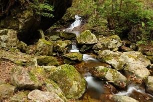 飛騨清見 羽衣の滝の写真素材 [FYI01234348]