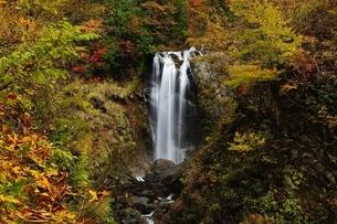 天生峠の中滝の写真素材 [FYI01234556]
