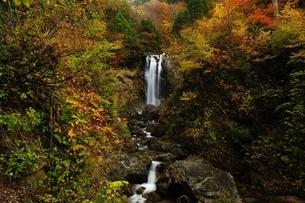 天生峠の中滝の写真素材 [FYI01234557]