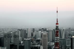 東京タワーと東京の風景の写真素材 [FYI01234714]