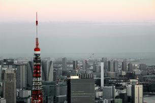 東京タワーと東京の風景の写真素材 [FYI01234715]