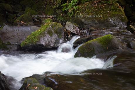 川の写真素材 [FYI01234771]