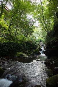 川の写真素材 [FYI01234772]