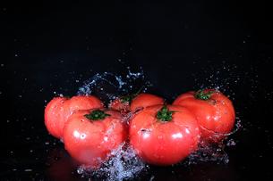 トマトと水飛沫の写真素材 [FYI01234898]