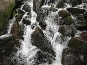 滝の写真素材 [FYI01234941]