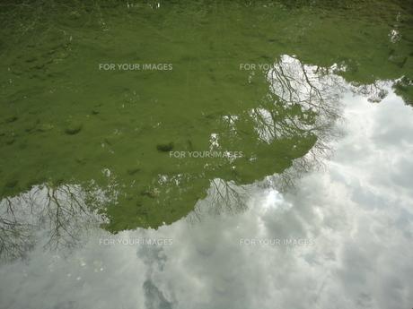 水面の写真素材 [FYI01234943]