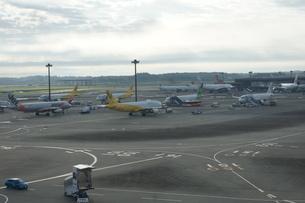 成田空港第3旅客ターミナルの写真素材 [FYI01234999]