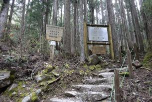 株杉の森 説明看板の写真素材 [FYI01235053]