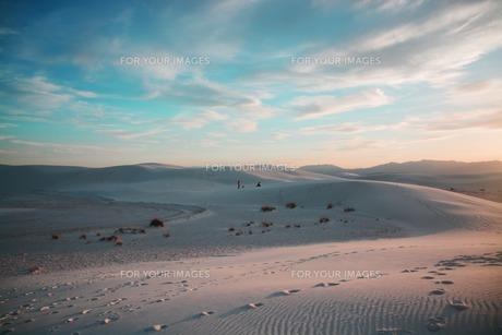 ホワイトサンズ 夕暮れの写真素材 [FYI01235146]