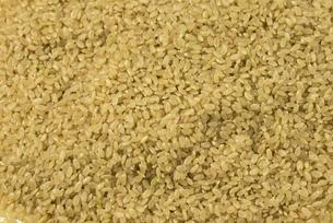 玄米の写真素材 [FYI01235187]