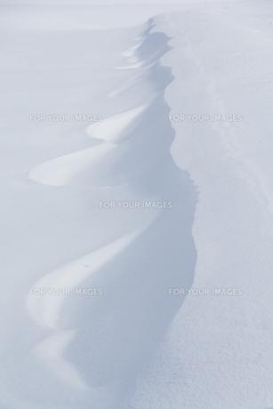 雪原にできた風紋の写真素材 [FYI01235217]