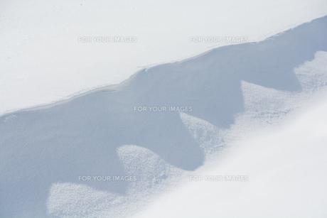 雪原にできた風紋の写真素材 [FYI01235218]