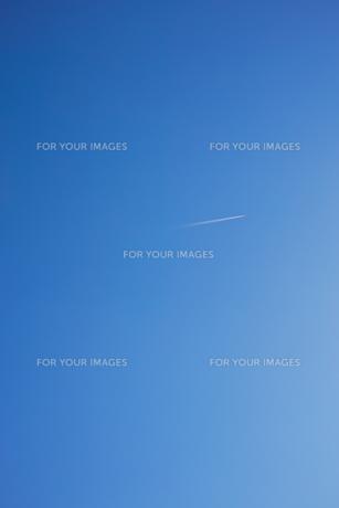 縦長で斜光の青空の写真素材 [FYI01235295]