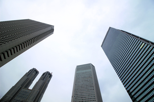 クールな色彩に統一された新宿の高層ビル群の写真素材 [FYI01235459]
