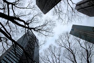 クールな色彩に統一された新宿の高層ビル群の写真素材 [FYI01235470]