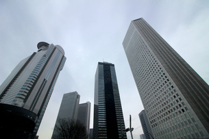 クールな色彩に統一された新宿の高層ビル群の写真素材 [FYI01235481]
