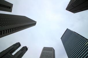 クールな色彩に統一された新宿の高層ビル群の写真素材 [FYI01235486]