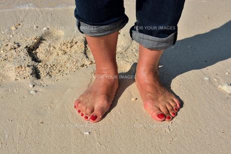砂浜の女性の足の写真素材 [FYI01235532]