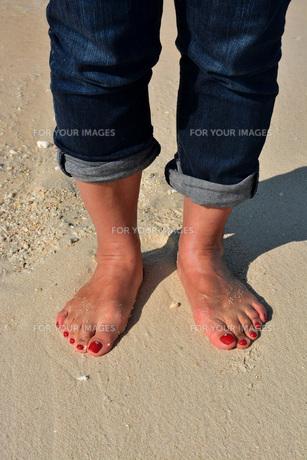砂浜の女性の足の写真素材 [FYI01235533]