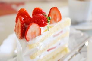 コーヒーとイチゴのショートケーキの写真素材 [FYI01235841]