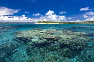 沖縄のサンゴの海の写真素材 [FYI01235942]